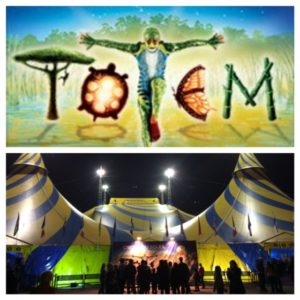 Collage of Totem